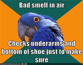 Bad smell in air  Checks underarms and bottom of shoe just to make sure