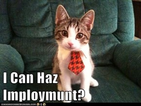 I Can Haz Imploymunt?