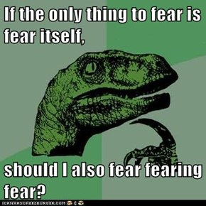 If the only thing to fear is fear itself,  should I also fear fearing fear?