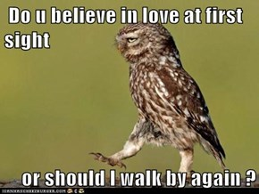 Bad Pick-Up Line Owl is Interested in You