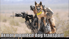 Armor mounted dog transport