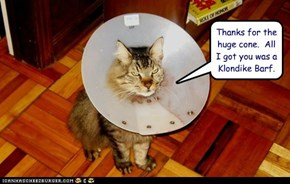 Thanks for the huge cone.  All I got you was a Klondike Barf.
