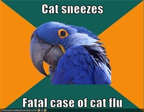 Cat sneezes  Fatal case of cat flu