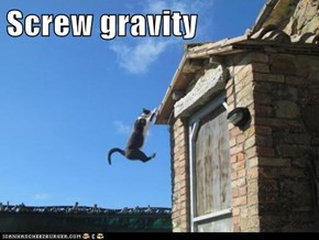 Screw gravity