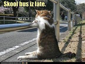 Skool bus