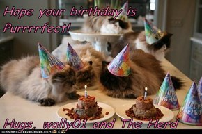 Hope your birthday is Purrrrfect!  Hugs, wally01 and The Herd
