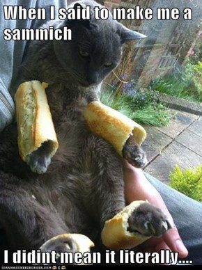 When I said to make me a sammich  I didint mean it literally....