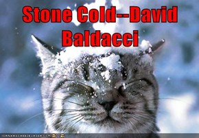 Stone Cold--David Baldacci