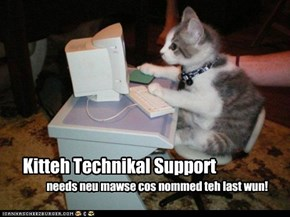 Kitteh Technikal Support