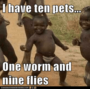 I have ten pets...  One worm and nine flies
