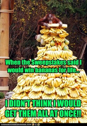 When the Sweepstakes said I would win bananas for life...