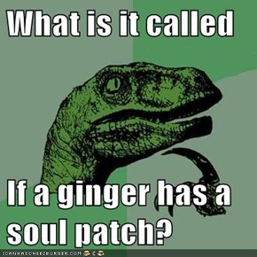 What is it called  If a ginger has a soul patch?