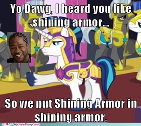 So Much Shining Armor