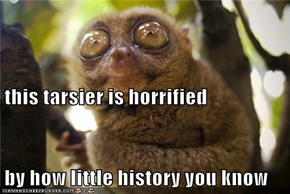 this tarsier is horrified by how little history you know