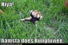 Hiya!  hamsta does Kungfuwee