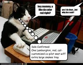 bware ov innocent-sounding inquiriez frum tech-skilled kittehz