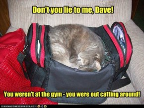 You weren't at the gym - you were out catting around!