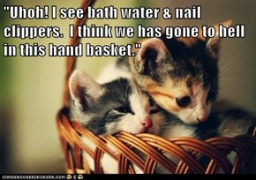 """Uhoh! I see bath water & nail clippers.  I think we has gone to hell in this hand basket."""