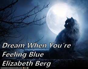 Dream When You're Feeling Blue           Elizabeth Berg