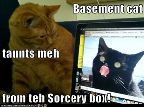 Basement cat taunts meh from teh Sorcery box!