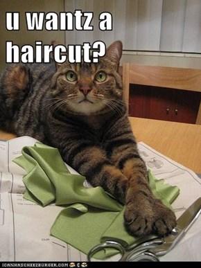 u wantz a haircut?