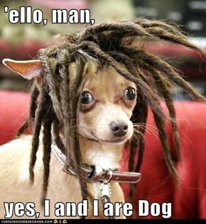 'ello, man,  yes, I and I are Dog