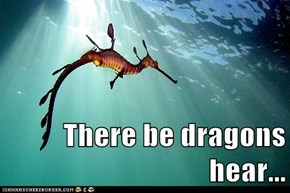 There be dragons hear...