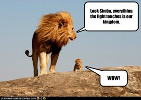 Look Simba, everything the light touches is our kingdom.