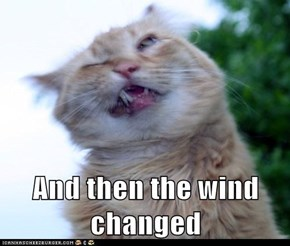 And then the wind changed