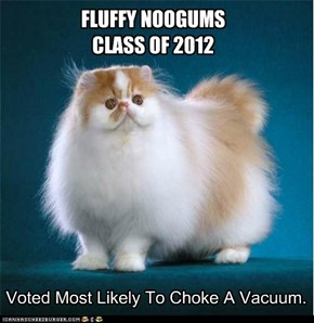 FLUFFY NOOGUMSCLASS OF 2012
