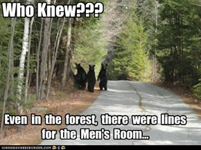 Who Knew???  Even in the forest, there were lines for the Men's Room...