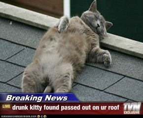 Breaking News - drunk kitty found passed out on ur roof