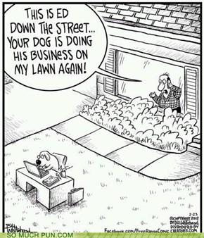 Damn Dogs!