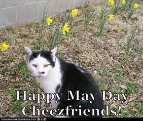 Happy May Day Cheezfriends!