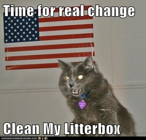 Time for real change  Clean My Litterbox