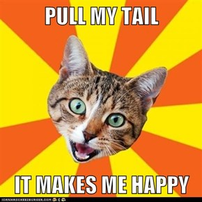 PULL MY TAIL  IT MAKES ME HAPPY
