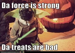 Da force is strong  Da treats are bad