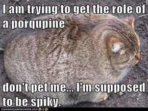 I am trying to get the role of a porqupine  don't pet me... I'm supposed to be spiky.