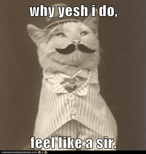 why yesh i do,  feel like a sir.