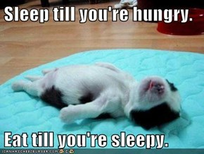 Sleep till you're hungry.  Eat till you're sleepy.