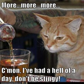 More...more...more...  C'mon, I've had a hell of a day, don't be stingy!