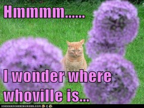Hmmmm......  I wonder where whoville is...