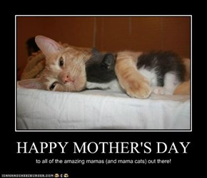 Lolcats: Happy Mother's Day!