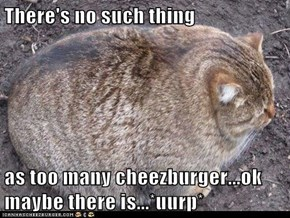 There's no such thing  as too many cheezburger...ok maybe there is...*uurp*