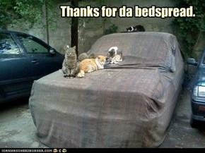 Thanks for da bedspread.
