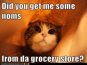 Did you get me some noms  from da grocery store?