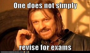 One does not simply  revise for exams