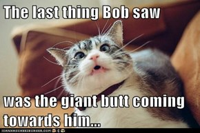 The last thing Bob saw  was the giant butt coming towards him...