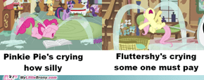 You just don't make fluttershy cry