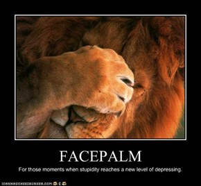 Animal Capshunz: Even Lions Have These Moments
